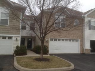 6280  Hudson Reserve Way  , Westerville, OH 43081 (MLS #215003899) :: The Raines Group