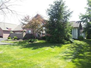 6027  Blendon Chase Drive  , Westerville, OH 43081 (MLS #215006563) :: The Raines Group