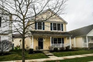 6195  Albany Way Drive  , Westerville, OH 43081 (MLS #215011294) :: The Raines Group