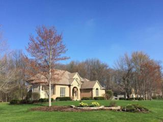 8918  Filiz Lane  , Powell, OH 43065 (MLS #215012620) :: Casey & Associates Real Estate