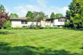 3453 N Old State Road  , Delaware, OH 43015 (MLS #215018261) :: Casey & Associates Real Estate