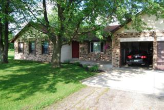 3911  Green-Cook Road  , Johnstown, OH 43031 (MLS #215018392) :: Casey & Associates Real Estate