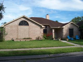 7233  Pepper Ridge  , Corpus Christi, TX 78413 (MLS #227923) :: Baxter Brooks Real Estate