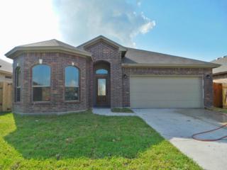 1734  Rhumba Trai  , Corpus Christi, TX 78410 (MLS #228420) :: Desi Laurel & Associates