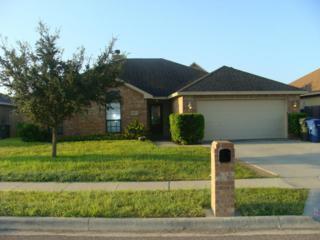 10413  Pioneer Dr  , Corpus Christi, TX 78410 (MLS #228519) :: Desi Laurel & Associates
