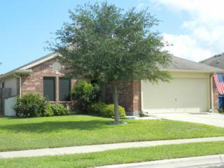 1718  Coronado Trai  , Corpus Christi, TX 78410 (MLS #228624) :: Desi Laurel & Associates