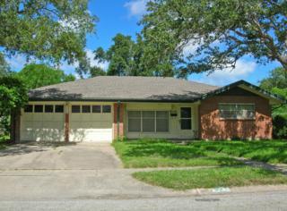 4110  Kevin Dr  , Corpus Christi, TX 78413 (MLS #228666) :: Baxter Brooks Real Estate