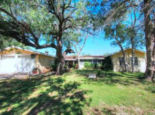 314  Princess Dr  , Corpus Christi, TX 78410 (MLS #228926) :: Desi Laurel & Associates
