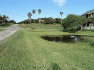 0  Bayshore Dr  , Ingleside On The Bay, TX 78362 (MLS #229126) :: Baxter Brooks Real Estate