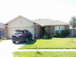 2013  Arizona Trai  , Corpus Christi, TX 78410 (MLS #229176) :: Desi Laurel & Associates