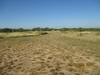 1147  Cr. 111  , Alice, TX 78332 (MLS #229318) :: Baxter Brooks Real Estate