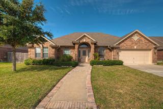 7609  Loire Blvd  , Corpus Christi, TX 78414 (MLS #229698) :: Baxter Brooks Real Estate