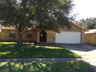 327  Birchwood Dr  , Kingsville, TX 78363 (MLS #230140) :: Baxter Brooks Real Estate