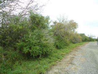 0  Lipantitlan Pk Road &  , Sandia, TX 78383 (MLS #230268) :: Baxter Brooks Real Estate