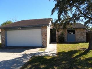 3838  Brookhill Dr  , Corpus Christi, TX 78410 (MLS #230332) :: Baxter Brooks Real Estate