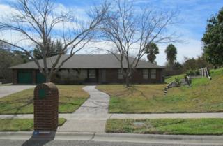 3922  Castle Knoll Dr  , Corpus Christi, TX 78410 (MLS #231732) :: Desi Laurel & Associates