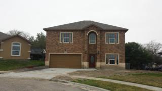 3801  Mesquite Ridge Dr  , Corpus Christi, TX 78410 (MLS #232787) :: Desi Laurel & Associates
