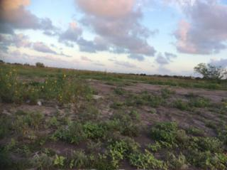 18  County Rd. 16A  , Corpus Christi, TX 78351 (MLS #233003) :: Baxter Brooks Real Estate