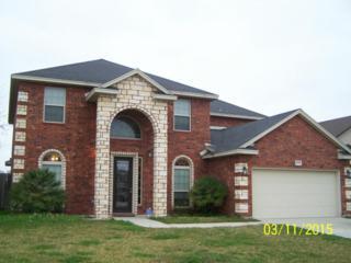 10230  Turning Leaf Dr  , Corpus Christi, TX 78410 (MLS #233301) :: Desi Laurel & Associates