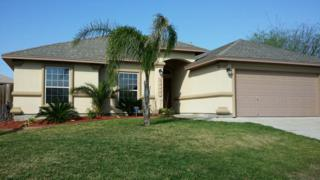 10806  Julianna Dr  , Corpus Christi, TX 78410 (MLS #233673) :: Desi Laurel & Associates
