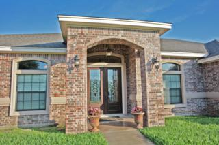 3738  Castle View Circ  , Corpus Christi, TX 78410 (MLS #233696) :: Desi Laurel & Associates