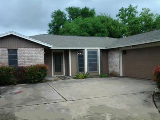 9322  Moon Beam Trai  , Corpus Christi, TX 78409 (MLS #234541) :: Desi Laurel & Associates