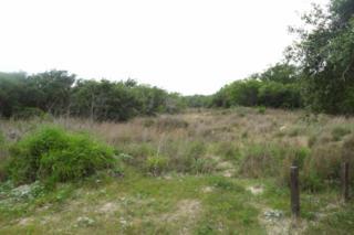 171  Akin Lane  , Rockport, TX 78382 (MLS #234623) :: Baxter Brooks Real Estate