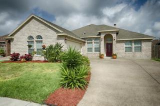 8305  Serenity Ct  , Corpus Christi, TX 78414 (MLS #235695) :: Baxter Brooks Real Estate
