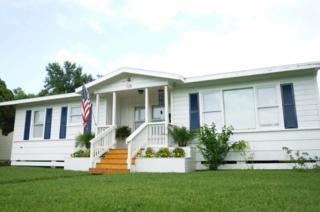 725  Pennington Dr  , Corpus Christi, TX 78412 (MLS #235698) :: Baxter Brooks Real Estate