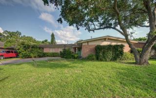 613  Driftwood Pl  , Corpus Christi, TX 78411 (MLS #235850) :: Baxter Brooks Real Estate