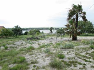 0  Carmel Dr  , Sandia, TX 78383 (MLS #235929) :: Baxter Brooks Real Estate