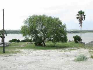 0  Carmel Drive  , Sandia, TX 78383 (MLS #235930) :: Baxter Brooks Real Estate
