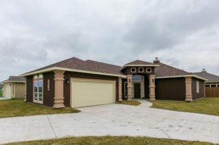3914  Eckner Dr  , Corpus Christi, TX 78414 (MLS #230382) :: Baxter Brooks Real Estate