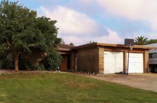 3225  Jamaica Dr  , Corpus Christi, TX 78418 (MLS #235812) :: Baxter Brooks Real Estate