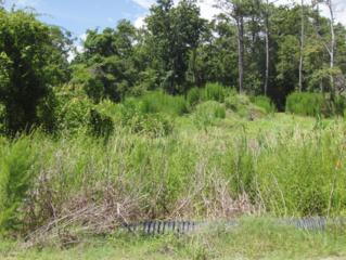 111  Dogwood Ln  7, Newport, NC 28570 (MLS #13-3773) :: Star Team Real Estate