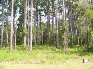 204  Leeward Ln  116, Beaufort, NC 28516 (MLS #13-5833) :: Star Team Real Estate