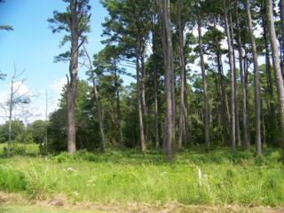 206  Leeward Ln  115, Beaufort, NC 28516 (MLS #13-5834) :: Star Team Real Estate