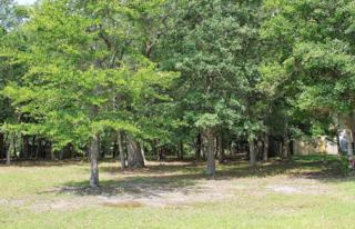 114  Buena Vista Drive  23, Newport, NC 28570 (MLS #14-2788) :: Star Team Real Estate