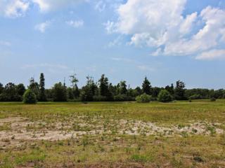 203  Cumberland St  69, Newport, NC 28570 (MLS #14-2999) :: Star Team Real Estate