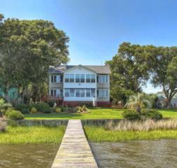 110  Pearson Circle EX , Newport, NC 28570 (MLS #14-3034) :: Star Team Real Estate