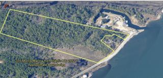 375  Morris Marina Rd  , Atlantic, NC 28511 (MLS #14-4159) :: Star Team Real Estate