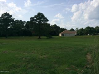 102  Wave Ct  , Newport, NC 28570 (MLS #14-4161) :: Star Team Real Estate
