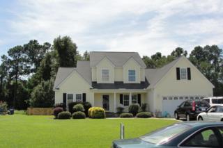 1905  Red Fox Ln  , Morehead City, NC 28557 (MLS #14-4188) :: Star Team Real Estate