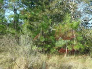 3009  Us-70 E , Beaufort, NC 28516 (MLS #14-5696) :: Bluewater Real Estate