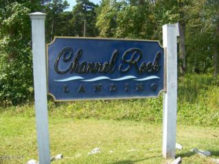 207  Leeward Ln  109, Beaufort, NC 28516 (MLS #14-5701) :: Star Team Real Estate
