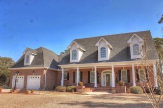 101  Buena Vista Drive  , Newport, NC 28570 (MLS #14-667) :: Star Team Real Estate