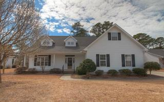 203  Slow Ln  , Morehead City, NC 28557 (MLS #15-1243) :: Star Team Real Estate