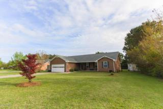 1913  Paulette Rd  , Morehead City, NC 28557 (MLS #15-1961) :: Star Team Real Estate