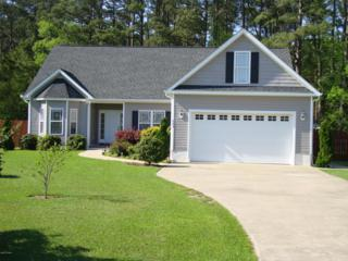 553  Park Meadows Drive  , Newport, NC 28570 (MLS #15-2082) :: Star Team Real Estate