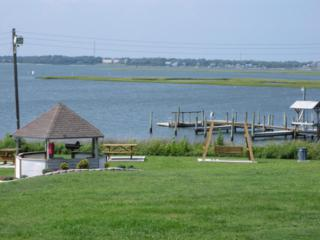1918  Fort Macon Rd  230, Atlantic Beach, NC 28512 (MLS #15-2215) :: Bluewater Real Estate
